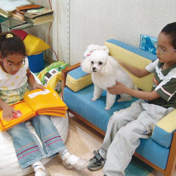 Em uma sala, uma menina de aproximadamente 8 anos, está sentada em um pufe branco e toca o livro de feltro. À direita, em um sofá azul, um menino da mesma idade, com as mãos num cachorrinho poodle que está ao seu lado.